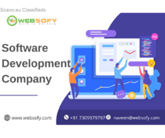 Top software Development Company in Lucknow: Websofy